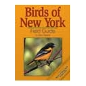 Field Guides: Birds