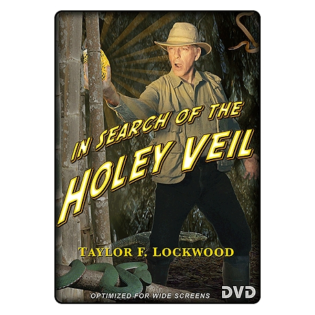 In Search of the Holey Veil