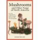Mushrooms & Other Fungi of North America  By Roger Phillips