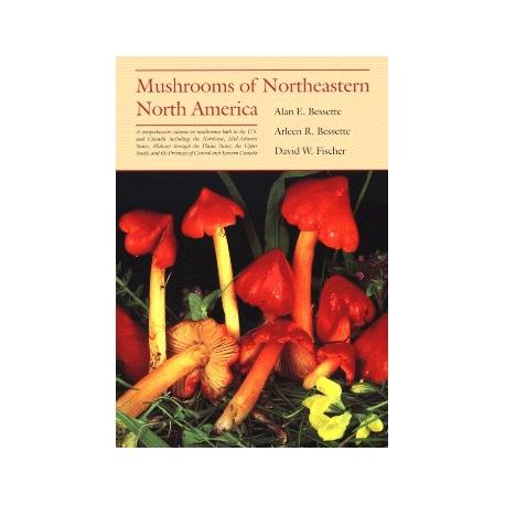 Mushrooms of Northeastern North America